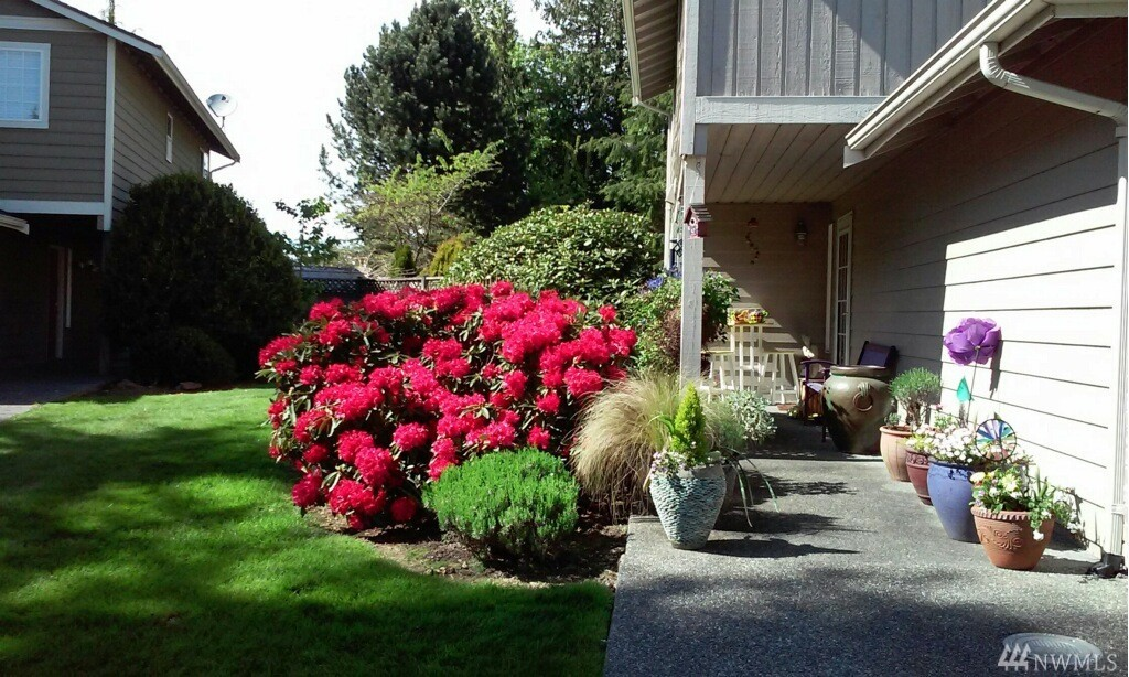 mountlake terrace jewish singles Single in the suburbs  fly fishers 101 class set for aug 4 in mountlake  plane crashes in to mountlake terrace home i was 14 years old and lived on ne.