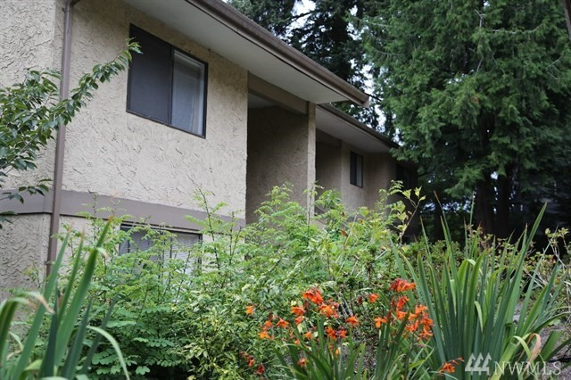10320 SE 6th St Bellevue WA 98004