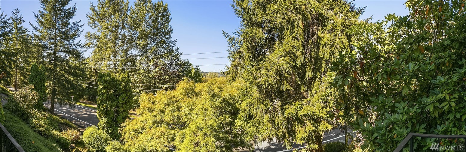 Photo 17 of 3730 Lake Washington Blvd SE Bellevue WA 98006