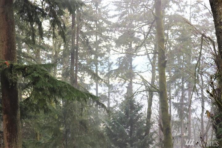 Photo 6 of 17900 SE 60TH St Bellevue WA 98006