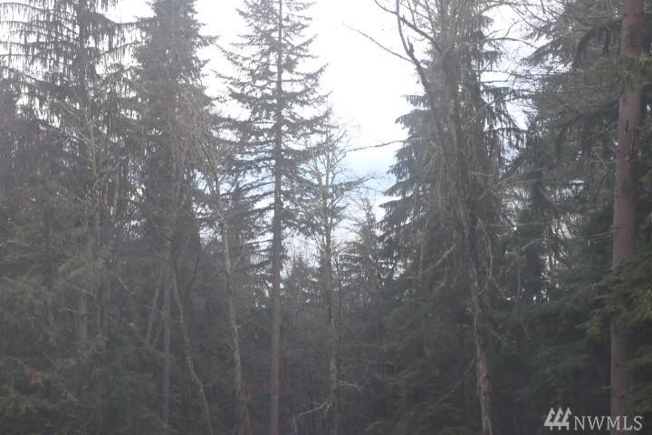 Photo 8 of 17900 SE 60TH St Bellevue WA 98006