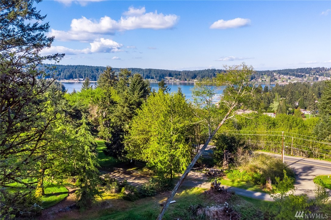 536 Eagle Ridge Lane Fox Island WA 98333