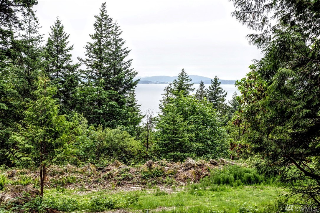 13322 Chuckanut Mountain Rd Bow WA 98232