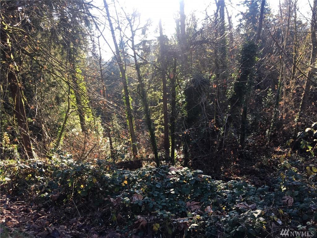 194 XX Forest Park Dr Lake Forest Park WA 98155