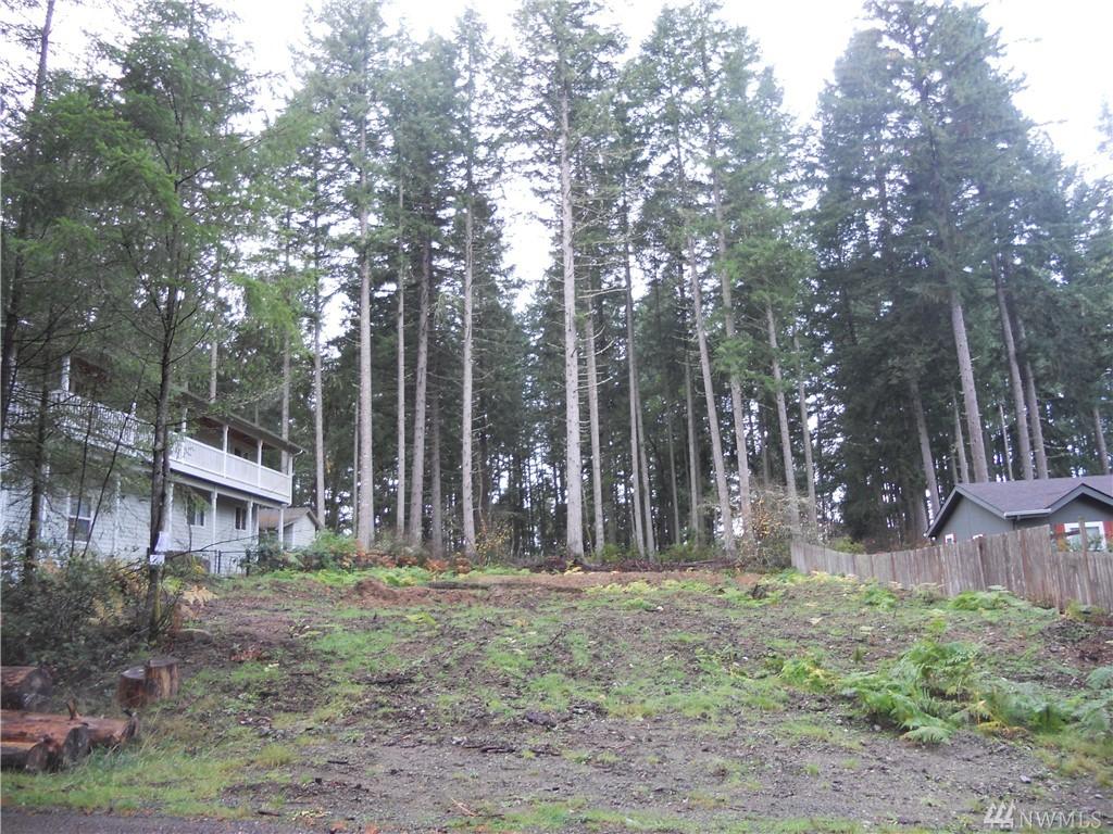 10118 Lake Florence Way Anderson Island WA 98303