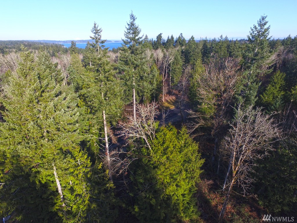 5 Lot 5 Forest View Ln Port Orchard WA 98366