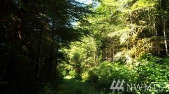 299 XX Cedar Ponds Rd Monroe WA 98272