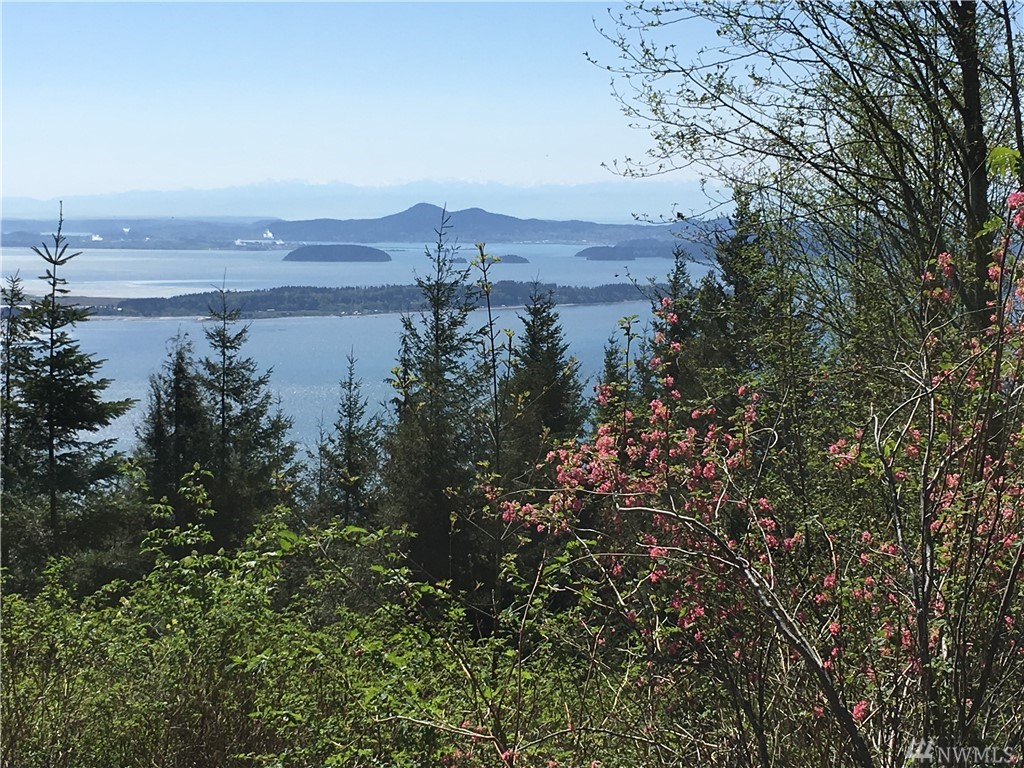 Chuckanut Ridge/Heavens Gate Bow WA 98232