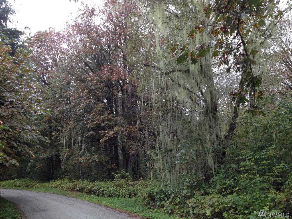 Emerald Lane Marblemount WA 98267