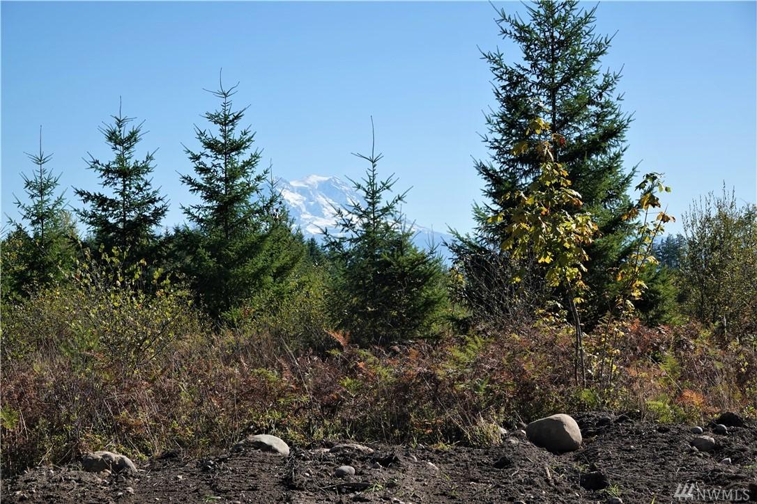 15611 Timber Ridge Ln SE Yelm WA 98597