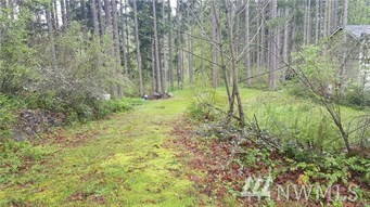 18214 Big Fir Ct SE Yelm WA 98597