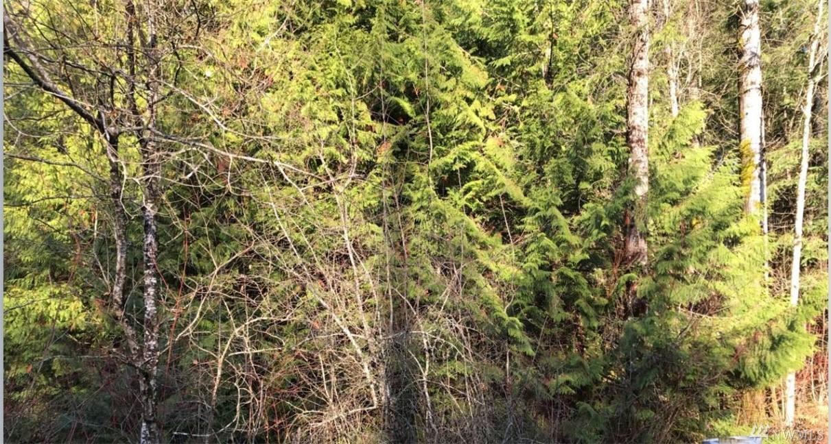 18802 62nd St Bonney Lake WA 98391
