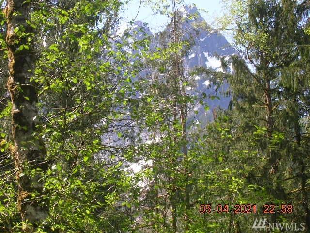 MT Index River Rd Index WA 98256
