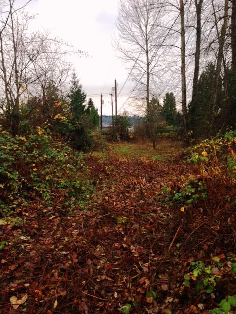 3423 W Lake Sammamish Pkwy SE Bellevue WA 98008